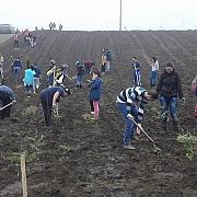 actiune nationala de impadurire a 80 de hectare de terenuri publice organizata in 14 noiembrie