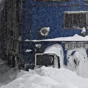 trenuri intarziate 17 decembrie doua linii blocate de copacii cazuti