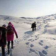in ciuda solicitarilor parintilor scolile din prahova raman deschise si miercuri 28 februarie