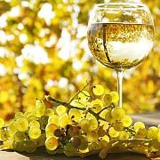 sectorul vitivinicol din romania a atras peste 500 de milioane de euro in ultimii 10-12 ani