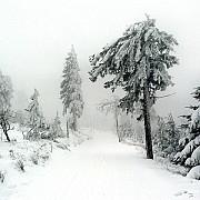 cod galben de lapovita ninsori si intensificari ale vantului in 27 de judete inclusiv in prahova