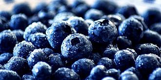fructul pe care ar trebui sa-l mancam zilnic pentru a scapa de grasimea de pe abdomen este permis si diabeticilor