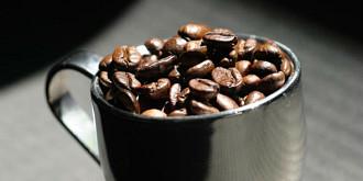 curiozitati despre cafea