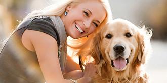 la bucuresti se poate posesorii de caini obligati sa-i inregistreze si sa-i sterilizeze