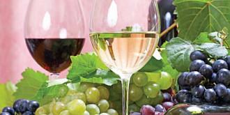 romania va creste semnificativ importul de vinuri moldovenesti