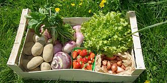 care sunt cele mai sanatoase fructe si legume pentru consum in romania