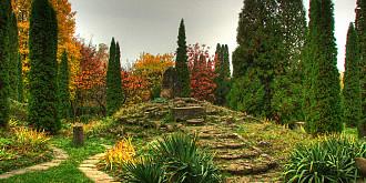 cea mai veche gradina botanica din romania