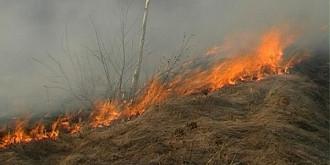 fermierii care ard miristile vor fi sanctionati