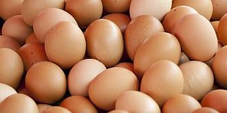cand devin ouale periculoase pentru sanatate