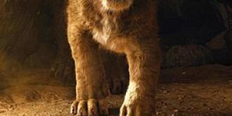 premiera mondiala a filmului regele leu cand ajunge lion king si in romania