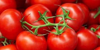 cele mai toxice 5 alimente pe care le consumam foarte des se poate intra din coma din cauza lor