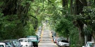 rua goncalo de carvalho cea mai frumoasa strada din lume