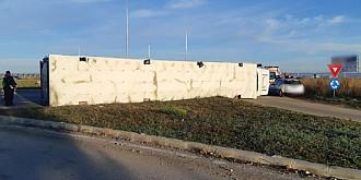 foto camion incarcat cu porci rasturnat in giratoriul de la carrefour