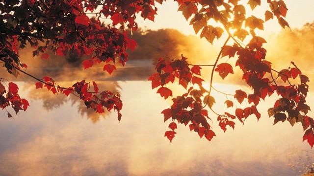 anm cum va fi vremea in septembrie octombrie si noiembrie